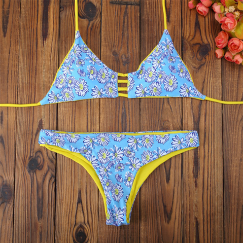 BLUE DAISY HOLLOW TWO PIECE BIKINI